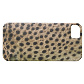 Cheetah Spotted Faux Fur, Wildlife Photo-sample iPhone SE/5/5s Case
