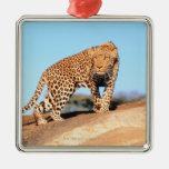 Cheetah Square Metal Christmas Ornament