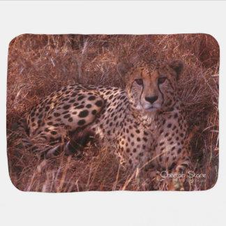 Cheetah Stare Baby Blanket