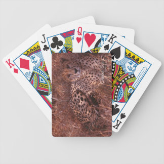 Cheetah Stare Bicycle Playing Cards