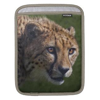 Cheetah Stare iPad Sleeve