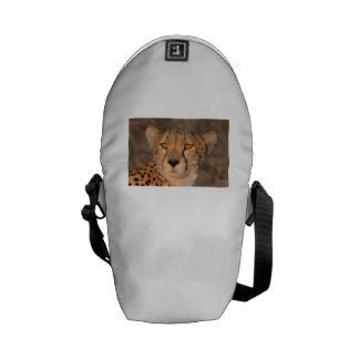 Cheetah Stare Messenger Bags