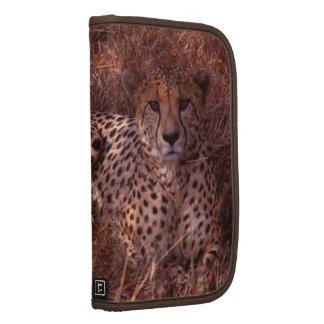 Cheetah Stare Folio Planner