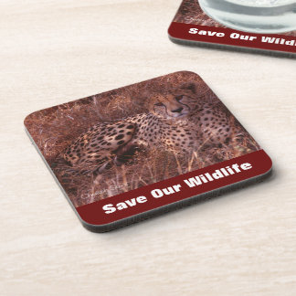 Cheetah Stare Save Our Wildlife Coasters