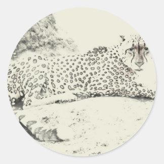 Cheetah Stare Tom Wurl.jpg Classic Round Sticker