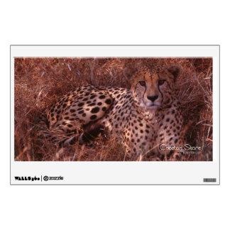 Cheetah Stare Wall Sticker