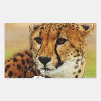 Cheetah Rectangular Sticker