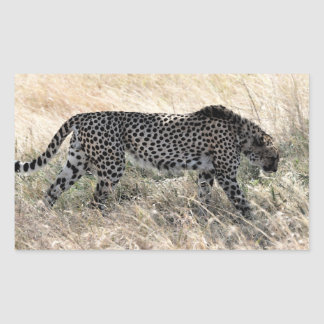 Cheetah Sticker 1