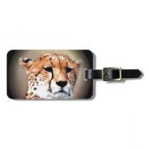 Cheetah Tear Marks Hakunamatata Bag Tag