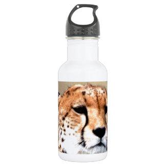 Cheetah Tear Marks Hakunamatata 18oz Water Bottle