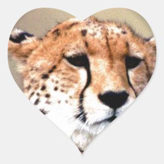 Cheetah Tear Marks Hakunamatata.png Heart Sticker