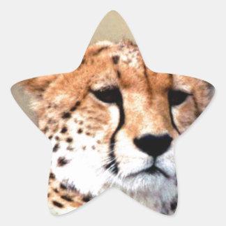 Cheetah Tear Marks Hakunamatata Star Sticker
