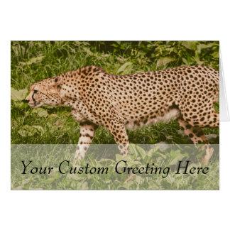 Cheetah Walking In A Field, Animal Photography Card