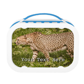 Cheetah Walking In A Field, Animal Photography Lunch Box