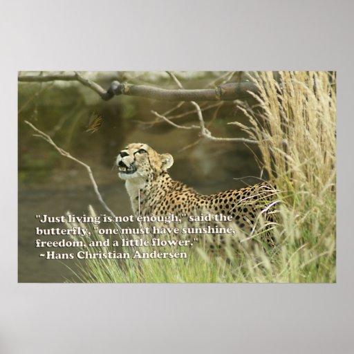 Cheetah quotes - photo#3