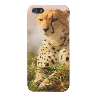 Cheetah wildlife art case for iPhone 5