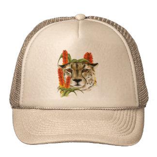 Cheetah with Aloe Hat