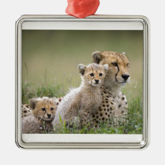 Cheetah With Her Cubs; Motherhood Square Metal Christmas Ornament
