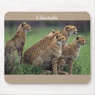 Cheetahs at wildlife reserve mouse pad