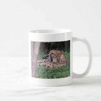 Cheetah's breath coffee mugs