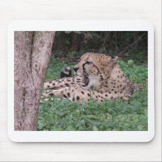 Cheetah's breath mousepads