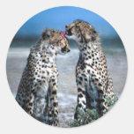 Cheetahs Classic Round Sticker
