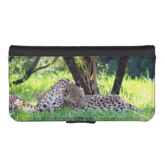 Cheetahs Grooming in the shade. Phone Wallet