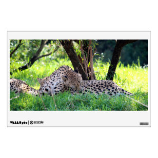 Cheetahs Grooming in the shade. Wall Sticker