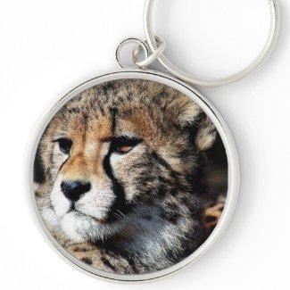 Cheetahs keychain