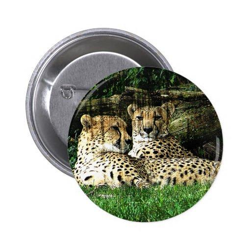 Cheetahs Lounging Grunge 2 Inch Round Button