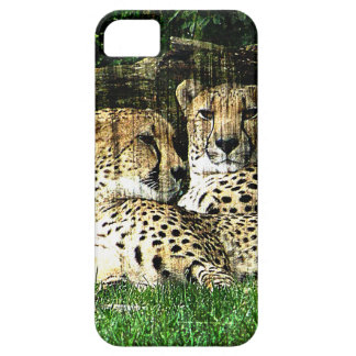 Cheetahs Lounging Grunge iPhone 5 Case