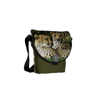 Cheetahs Lounging Grunge Courier Bags