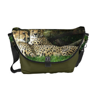 Cheetahs Lounging Grunge Courier Bag