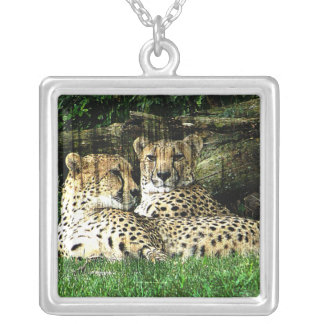 Cheetahs Lounging Grunge Personalized Necklace