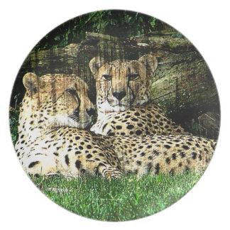 Cheetahs Lounging Grunge Plate