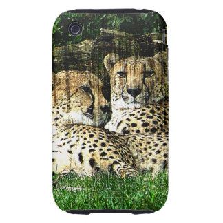 Cheetahs Lounging Grunge Tough iPhone 3 Cases