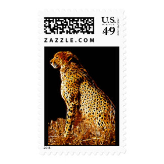 Cheetahs stance postage stamps