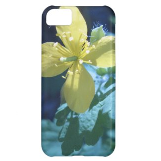 Chelidonium Cover For iPhone 5C