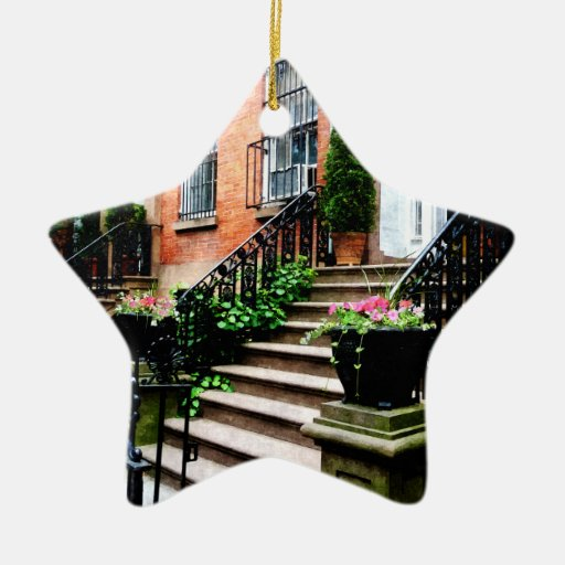 Chelsea Brownstones Double-Sided Star Ceramic Christmas Ornament