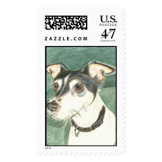 Chelsea Toy Fox Terrier Postage