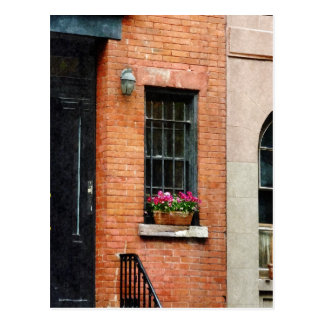 Chelsea Windowbox Postcard