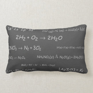 Chemical Reactions on Blackboard Lumbar Pillow