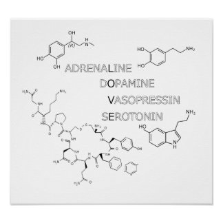 Chemical Structure Love Geek Poster