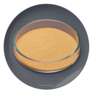 Chemicals 2 dinner plate
