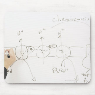 Chemistry on dry-erase board mouse pads
