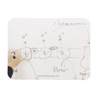 Chemistry on dry-erase board rectangular photo magnet