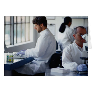 Chemists Working in a Laboratory Card