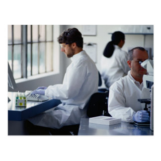 Chemists Working in a Laboratory Postcard