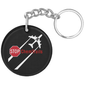 Chemtrail Plane Presistent Contrails Skull Bones Keychain