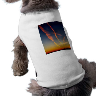 ChemTrails Tee